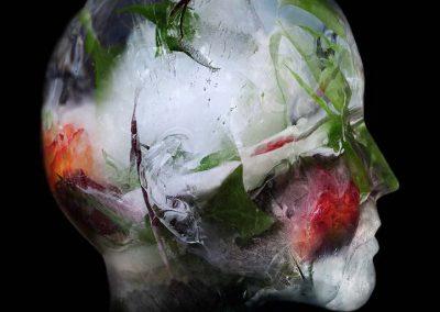 HEAD OF ROSES N#1 C-PRINT &m50 x 1m20 credit Anna Katharina Scheidegger 2017-2019