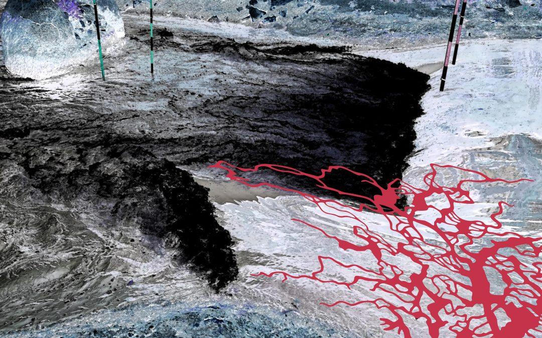 CORPS FLEUVE – Exposition Sylvie de Meurville